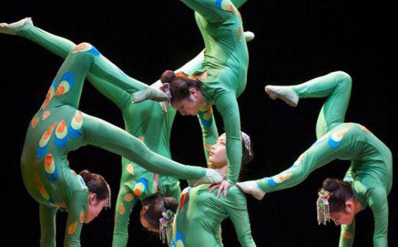 More Info for Cirque Diabolo